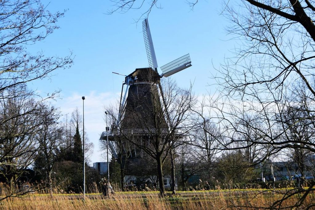 A windmill in Westerpark.  read about the most instagrammable spots in Amsterdam with tips from a local photographer on the best places to take photos in Amsterdam!