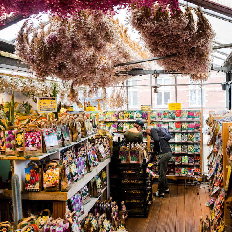 Bloemenmarkt, the Amsterdam Flower Market, is one of the places where you'll want to get a photo in Amsterdam! #travel #amsterdam #netherlands