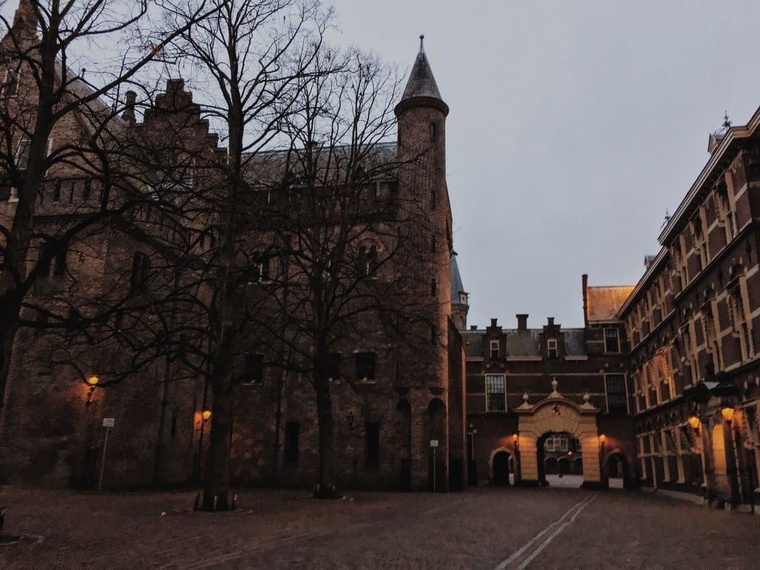 Photo of Binnenhof, the building used for government meetings in the Netherlands