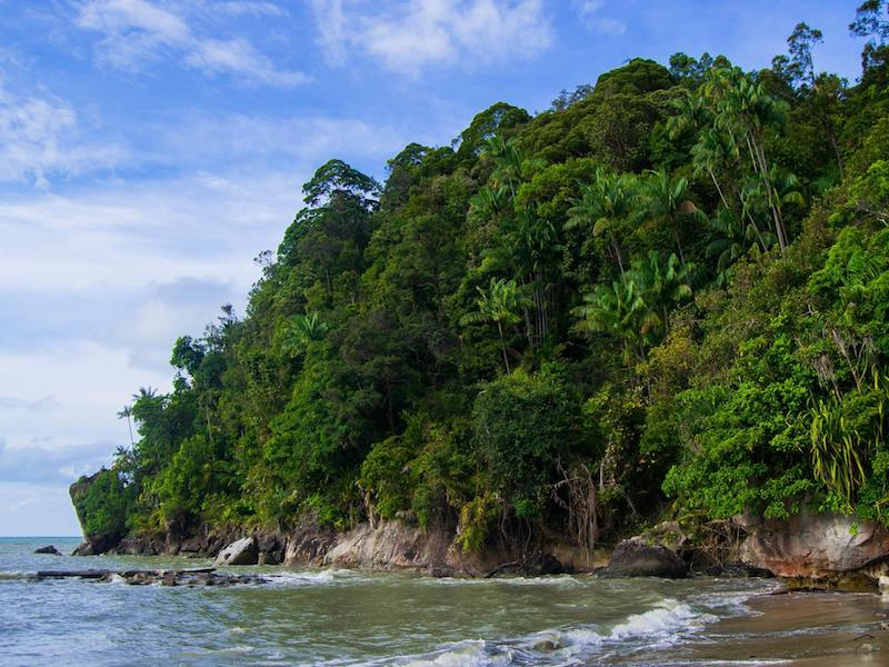 Photo of secluded beach in Bako National Park. Tips for what to bring to Bako and travel tips for visiting Bako National Park.