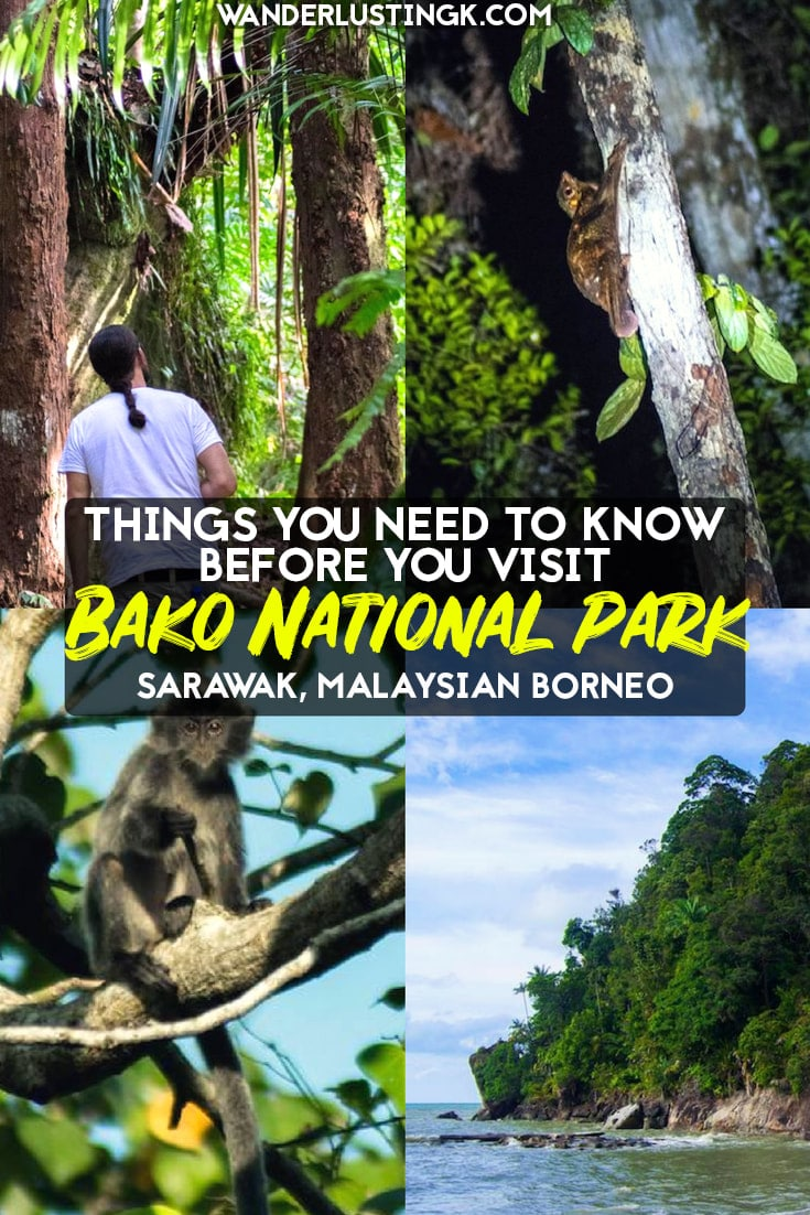 Tips for visiting Bako National Park in Sarawak, Malaysia. Tips for staying overnight or hiking in Bako National Park. #Malaysia #Travel #Bako #Borneo