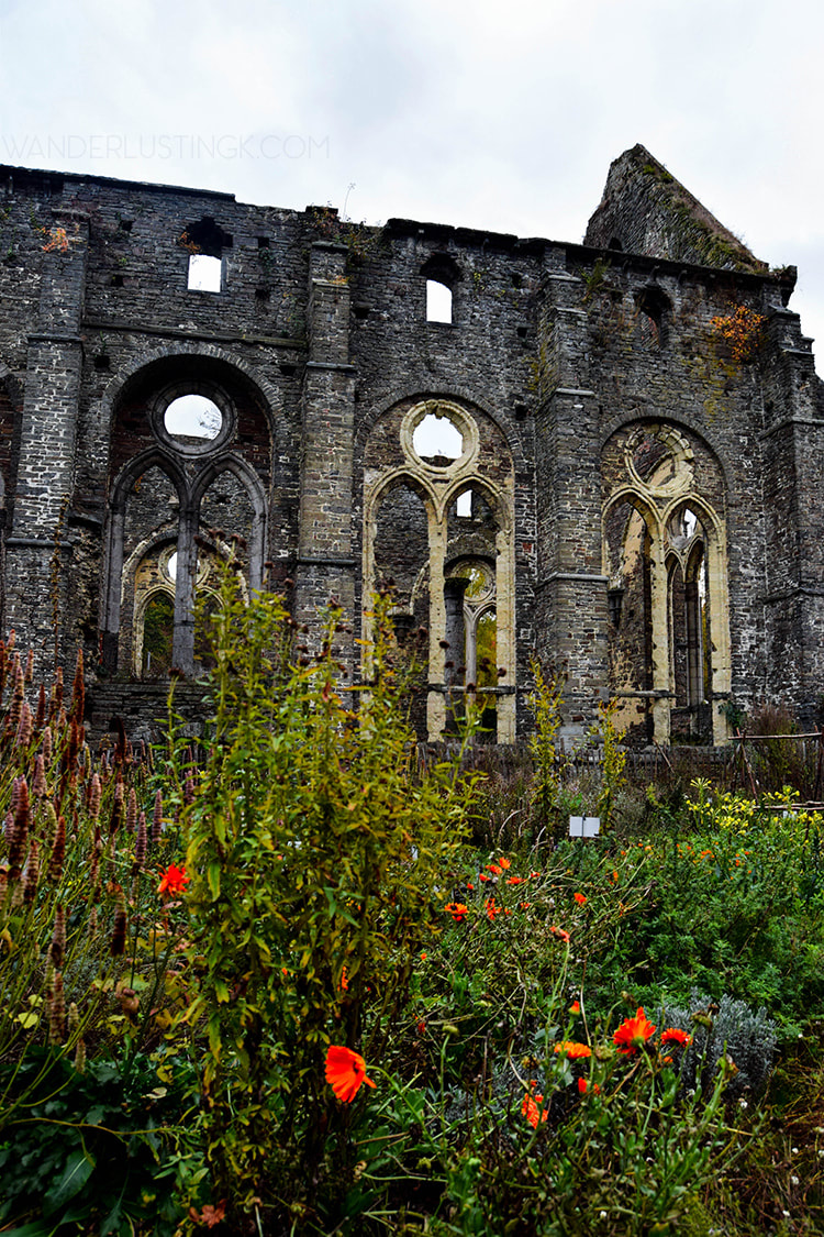 Flowers in Abbaye Villers La Ville. Find out the most beautiful things to see in Belgium at an abandoned abbey! #Belgium #Brussels