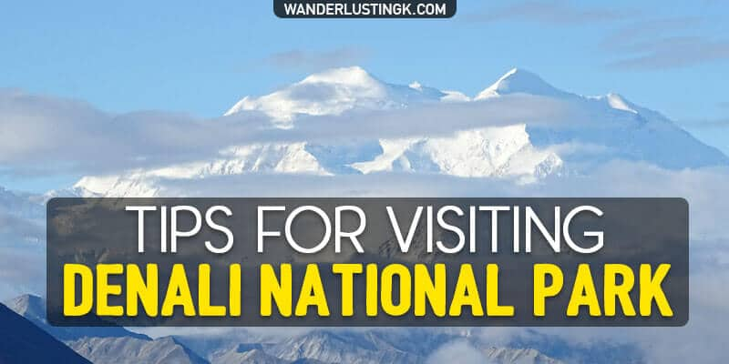 Things to know before you visit Denali National Park