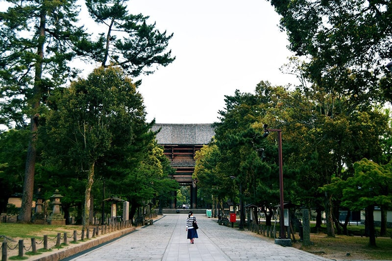 Nara Shrine. Find out how to do Japan on a budget and practical tips for cutting costs in Japan.