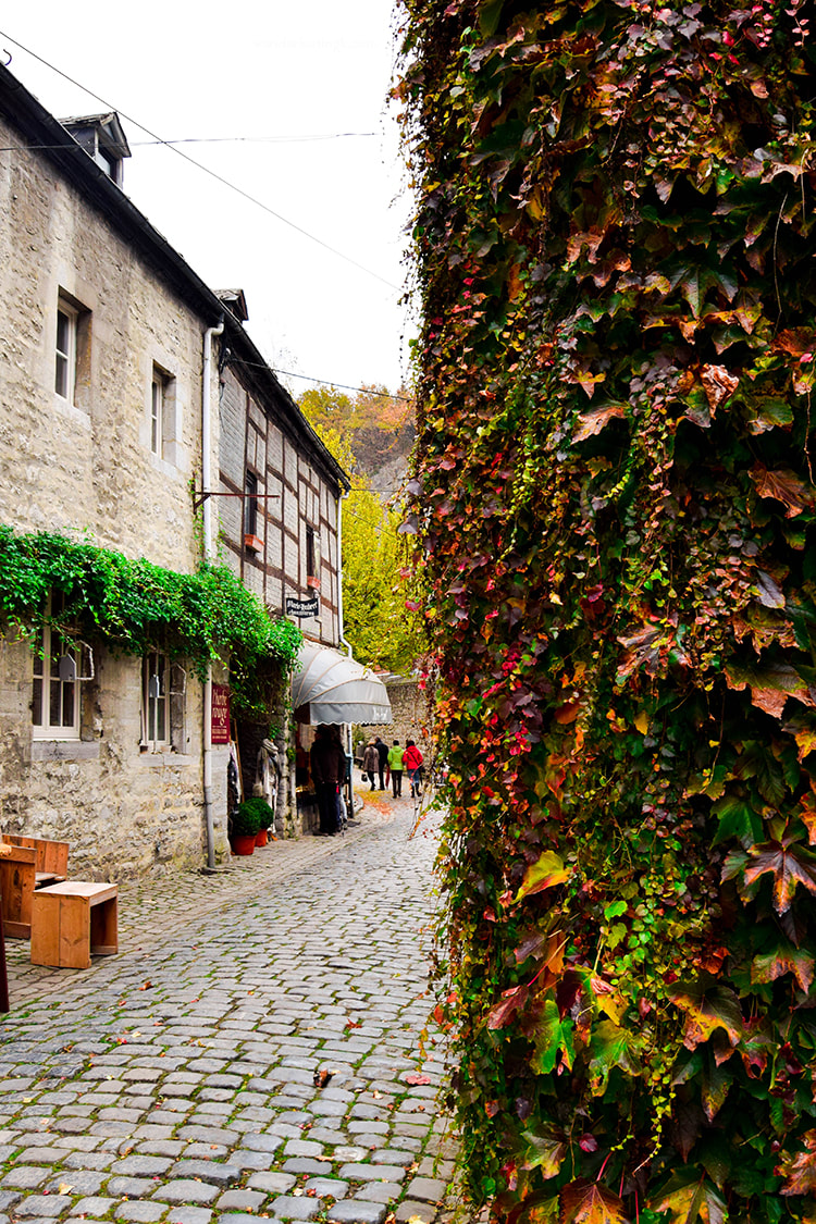 Beautiful vine and view of Durbuy Belgium. Discover one of the best day trips from Bruxelles!