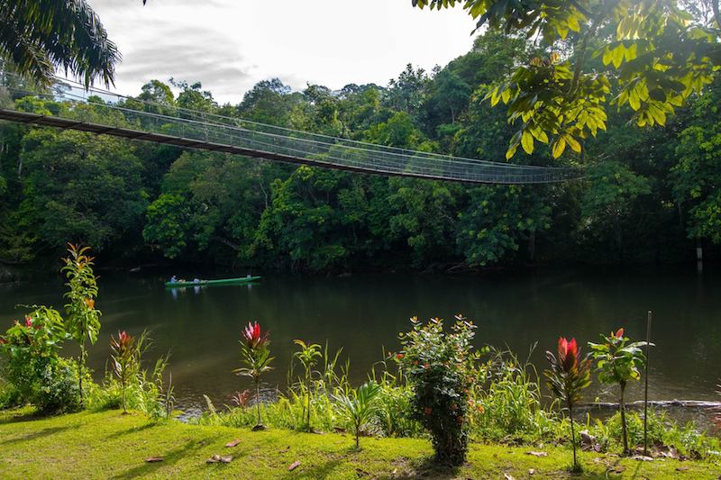 Photo of grounds of Freme hub in Temburong with rope bridge above the river, perfect for adventure lovers in Brunei