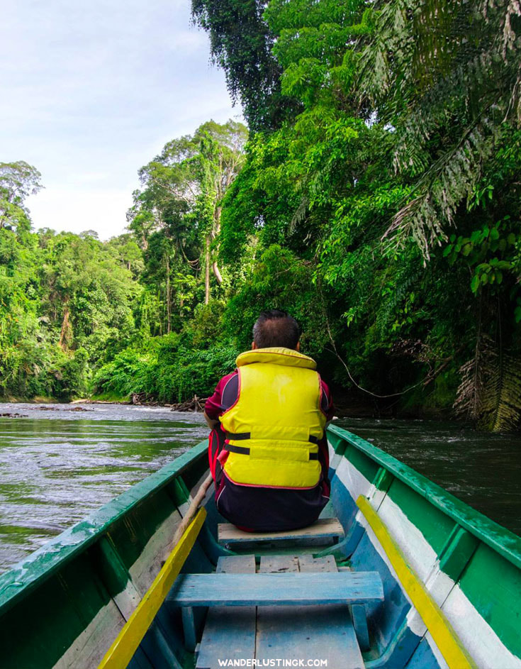 Interested in ecotourism in Borneo? Your guide to Brunei's Ulu Temburong National Park from Bandar Seri Begawan. #Asia #Brunei #Borneo #Ecotourism #Travel