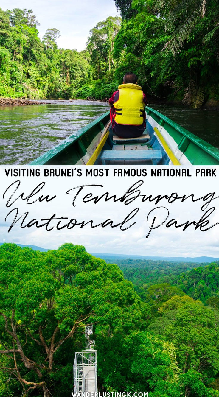Visiting Borneo? Get inspired to visit Brunei's Ulu Temburong National Park for ecotourism and a canopy walk in the rainforest. #Travel #Asia #Brunei