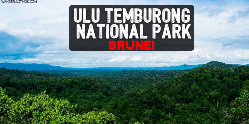 Tips for visiting Ulu Temburong National Park in Brunei, one of the best places to visit in Brunei. Read tips on finding a good tour to Ulu Temburong, what to pack, and what to expect from a day trip to Brunei's famous national park.