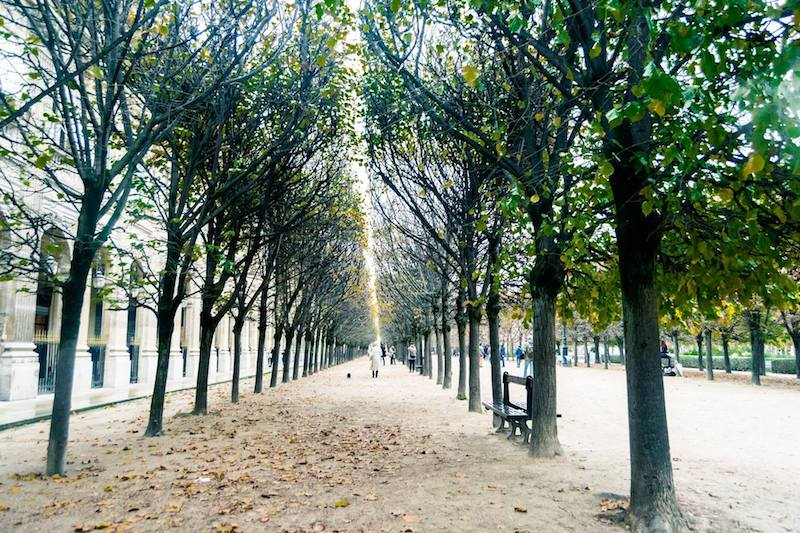 Photo of Jardin du Palais Royal in Paris, a stop off on a free self guided walking tour of Paris through the covered passages.