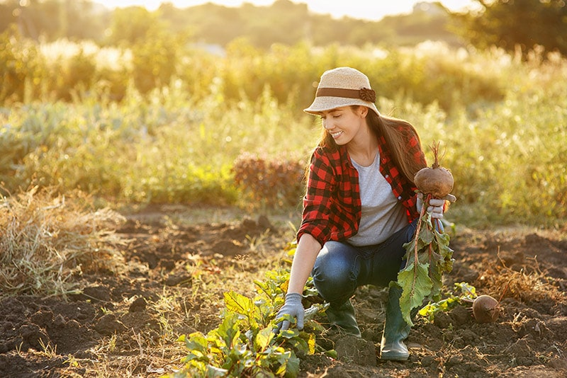 Photo of woman gardening for extra money. Read innovative ideas on how to make extra money on the side, so you can make more money for travel!