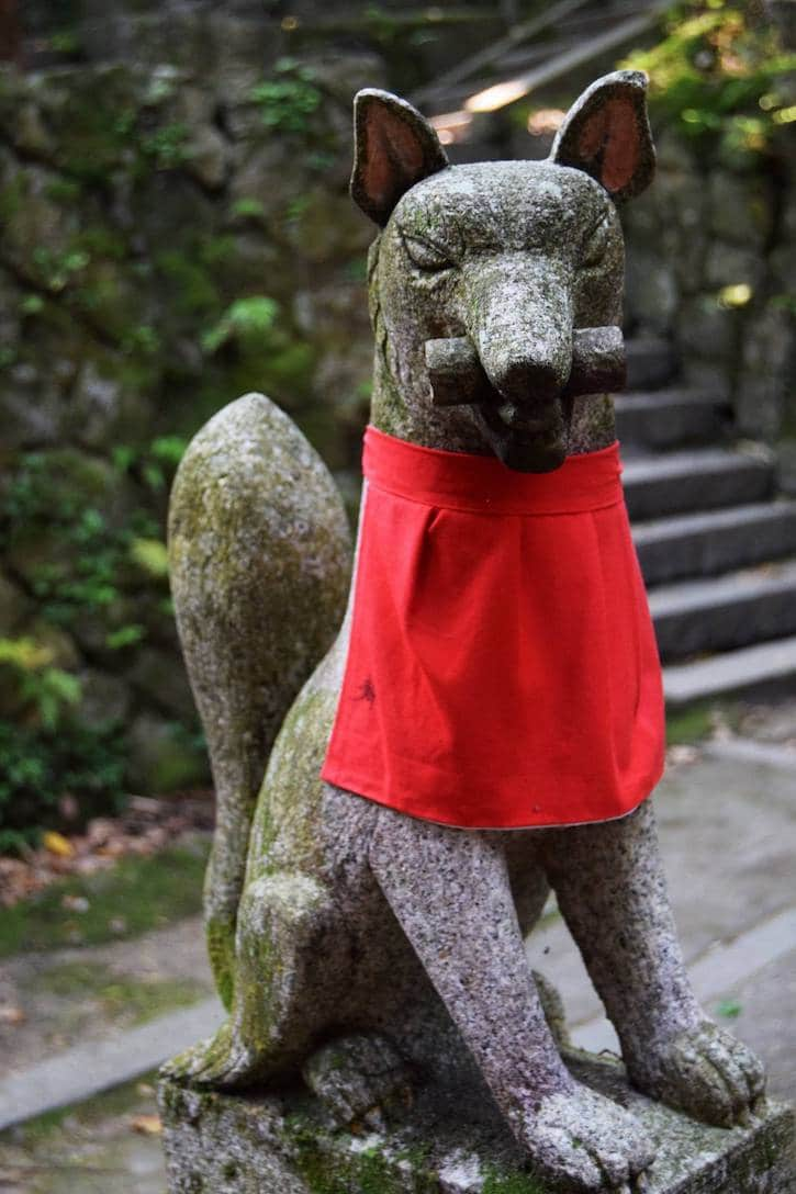 Photo of the foxes at the fushimi inari shrine in Kyoto. Read about the best places to visit in Kyoto! #travel #asia #japan #kyoto