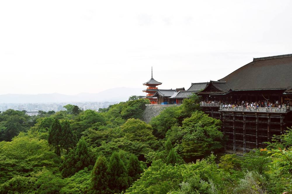 See the beautiful Kiyomizu-dera Buddhist temple in Kyoto, one of the UNESCO recognized temples in Kyoto!