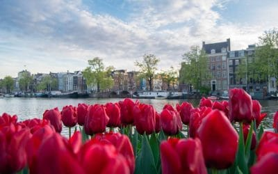 Amsterdam on a budget: Insider tips for the Netherlands on a budget