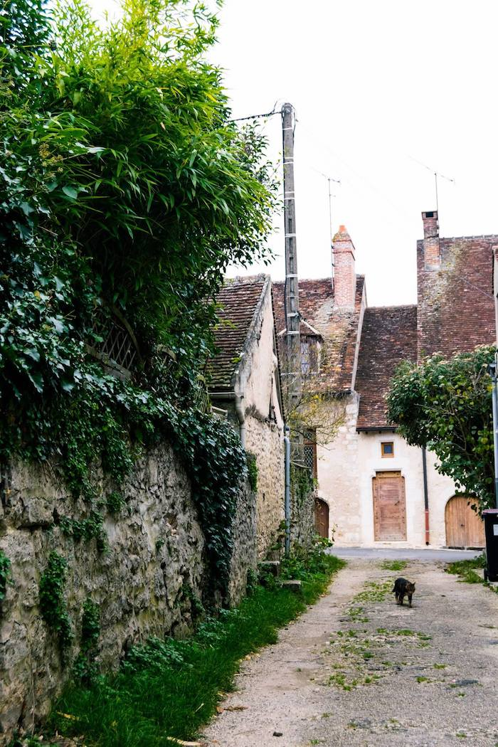 Cute cat in Provins France. This beautiful French UNESCO town is an easy day trip from Paris by train! #travel #cats #france