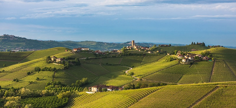 Photo of Vineyards of Langhe Piedmont, one of the reasons to visit the Piedmont region of Italy. Read why you need to visit Turin Italy!