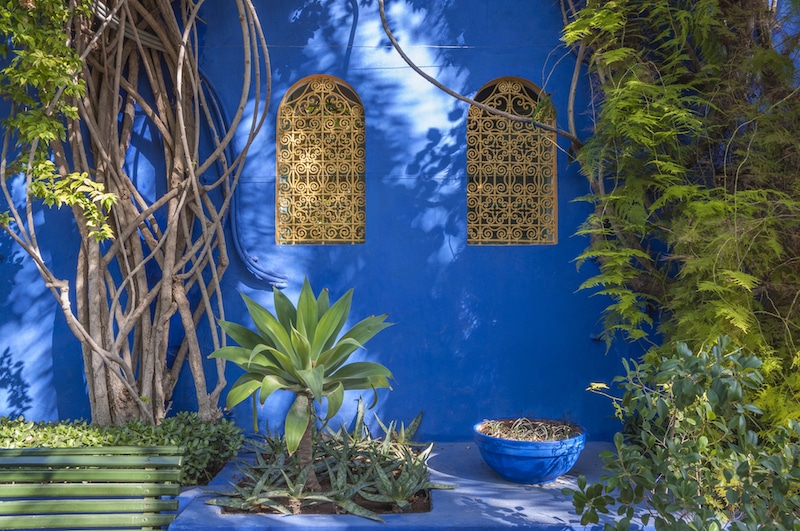 Photo of Jardin Majorelle in Marrakesh, Morocco. Jardin Majorelle is a must-see during your three days in Marrakesh! #travel #Marrakesh #Morocco