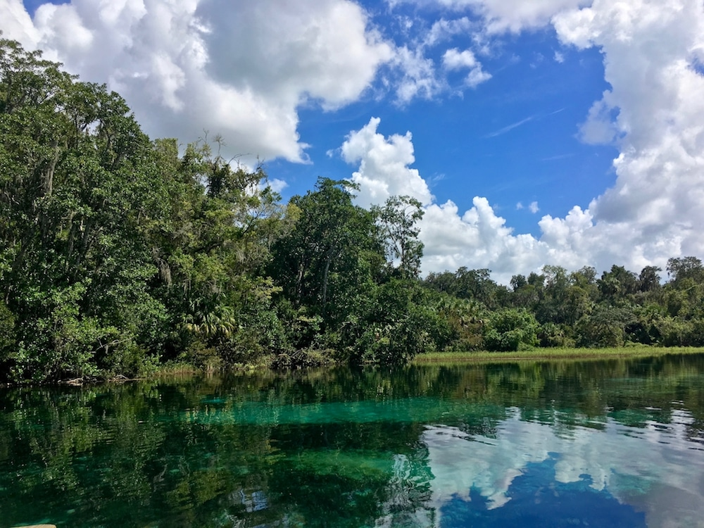 Photo of Rainbow Springs State Park in Marion County, Florida. This park is the perfect day trip from Orlando, Florida! #florida #orlando