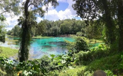 Rainbow Springs State Park, the most beautiful day trip from Orlando Florida