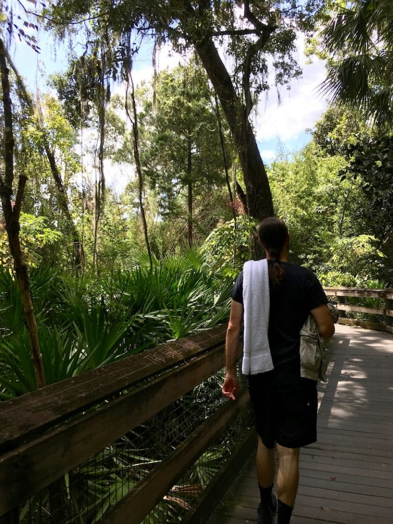 Man walking in Rainbow Springs State Park, one of the best budget day trips from Orlando Florida!
