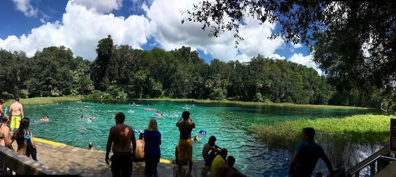 Photo of Rainbow Springs headwaters, a family-friendly day trip from Orlando Florida. Perfect for those looking for a budget day trip from Orlando!