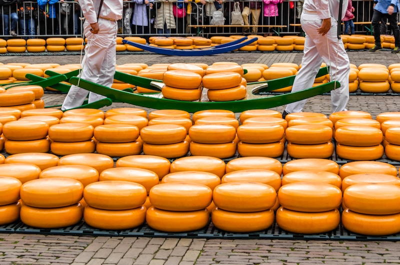 Men carrying cheese at the Dutch cheese market in Alkmaar, one of the best cheese markets to visit in Holland. #travel #holland #netherlands #nederland