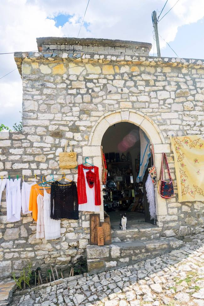 Cat serving as a shopkeeper in Berat, Albania. Read three reasons to visit this beautiful city in Albania! #travel #berat #albania #cats #UNESCO