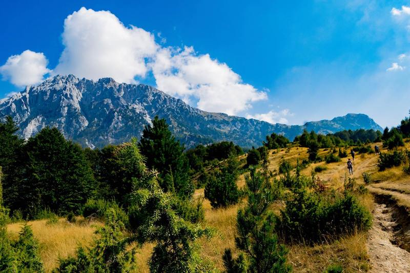 High alpine meadow near Theth, Albania. This meadow is near the beginning of the Theth to Valbona hike in Albania. #travel #albania #theth #valbona