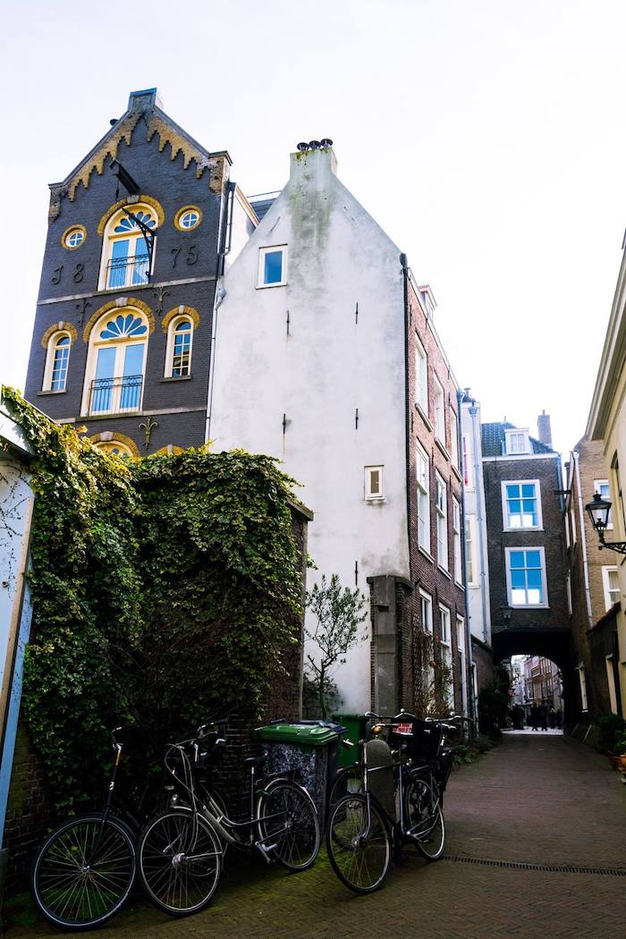 Beautiful view of a secret street in the Hague that is free to visit!