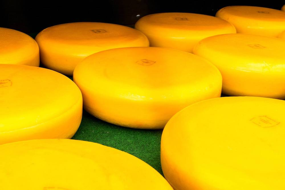 Cheese at the Woerden kaasmarkt in Woerden, the Netherlands. Read about the last real Dutch cheese market! #travel #cheese #netherlands #dutch #boerenkaas