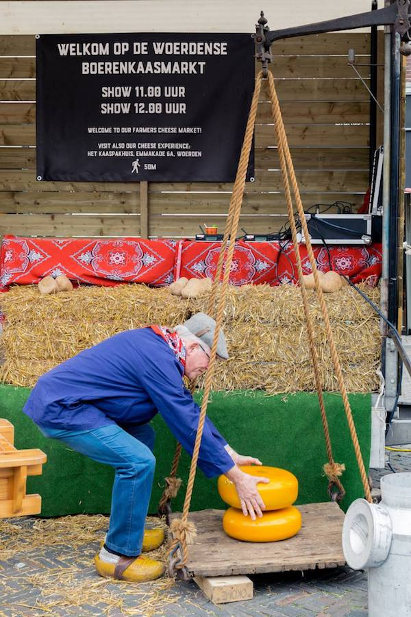 Farmer loading up the cheeses at the Woerden kaasmarkt, one of the last Dutch cheese markets in the Netherlands. Read about the Woerden cheese market! #travel #cheese #netherlands #gouda