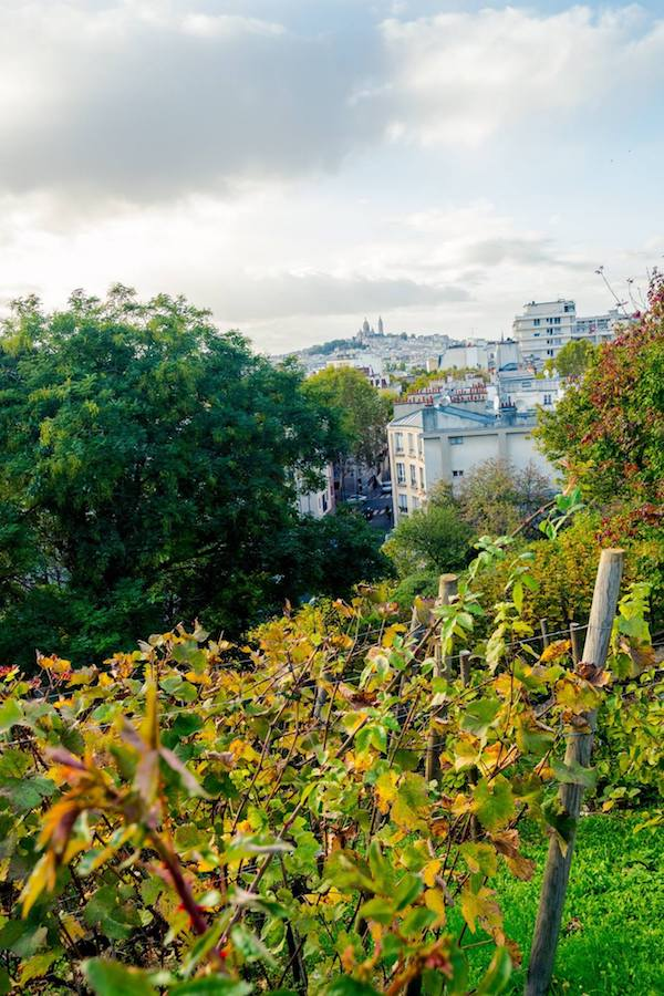 Views over Paris at a secret spot in Paris. Get your perfect Paris itinerary with insider tips for the best things to do in Paris. #Paris #travel #europe #France