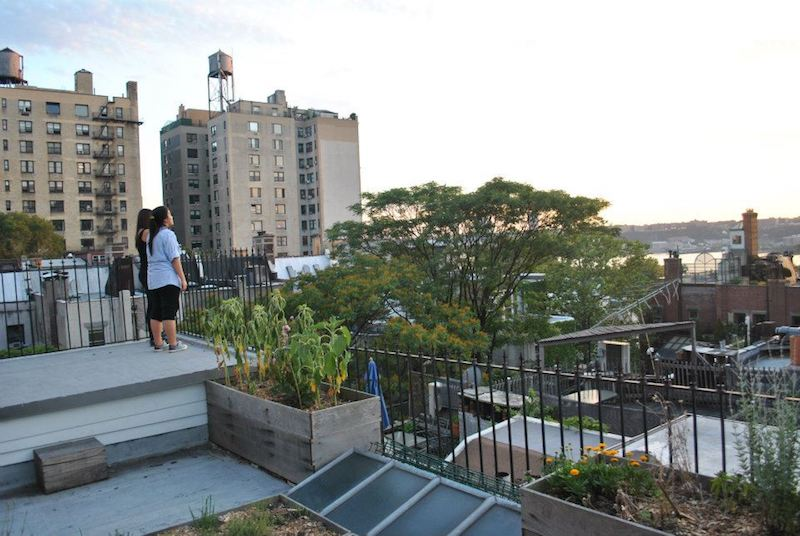 View from cheap Airbnb in NYC. Read how to save money on accommodation in the United States in this guide to cheap travel in the United States! #travel #USA #NYC