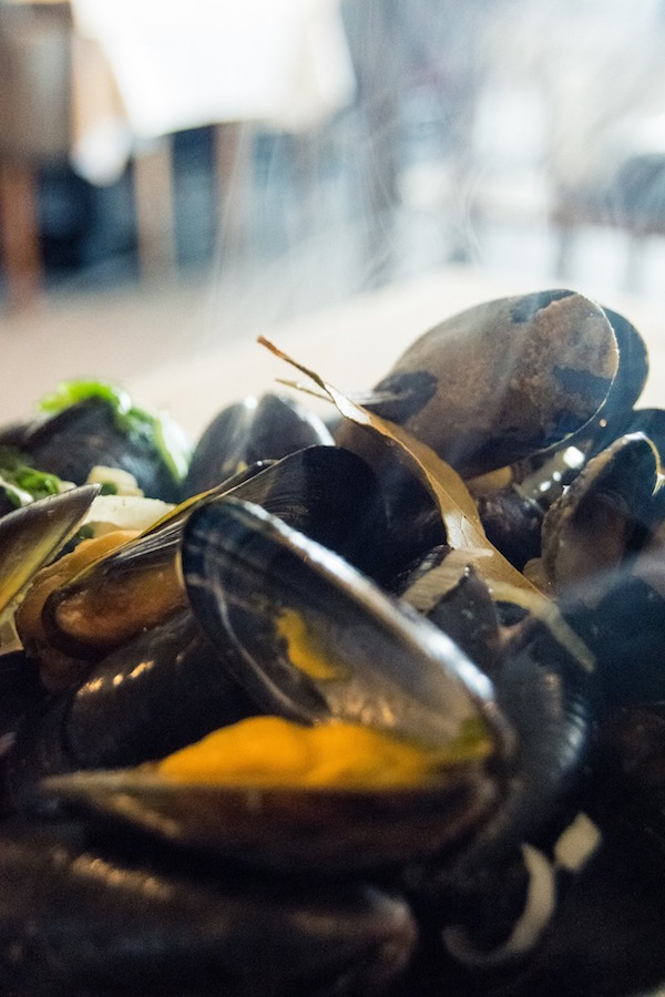 Fresh Zeeland mussels, one of the best seafood specialties to eat in Zeeland, a province of the Netherlands famous for seafood. #travel #Zeeland #mosselen #mussels #seafood