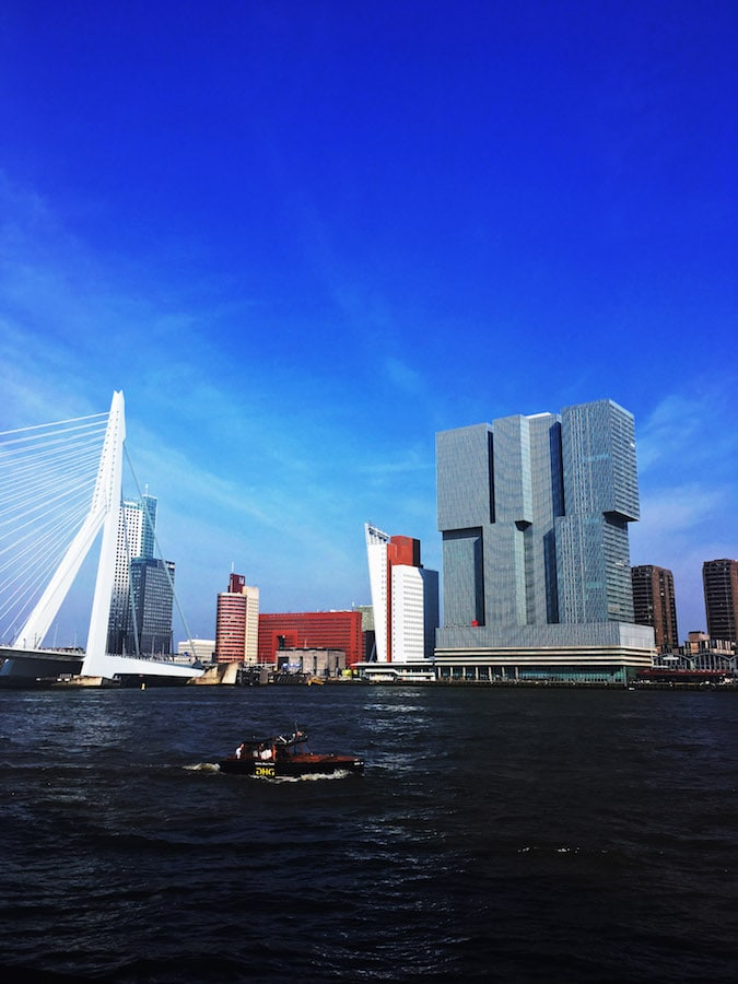 The Erasmusbrug, one of the icons of Rotterdam. If you have one day in Rotterdam, be sure to include walking or biking over this bridge on your itinerary. #travel #architecture