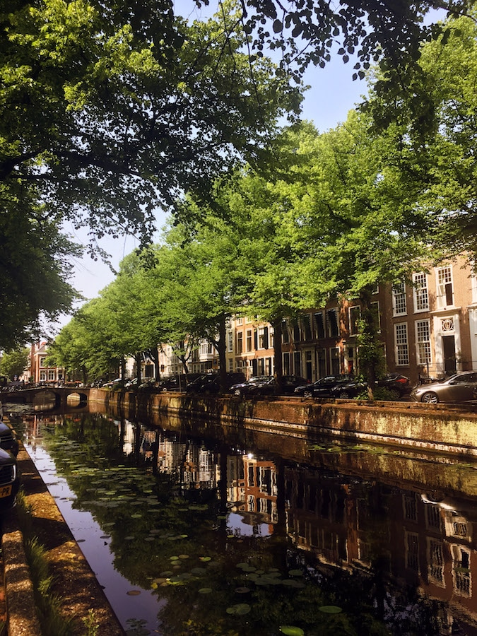 Denneweg, one of the most beautiful streets in the Hague. Read why you should stay in the center of the Hague in this guide in where to stay in the Hague. #travel #denhaag #holland #canals #netherlands
