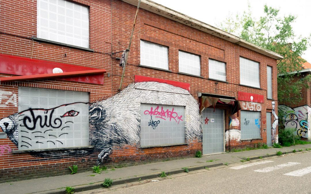 Visiting the 'abandoned' town of Doel, Belgium: A reflection on visiting Doel