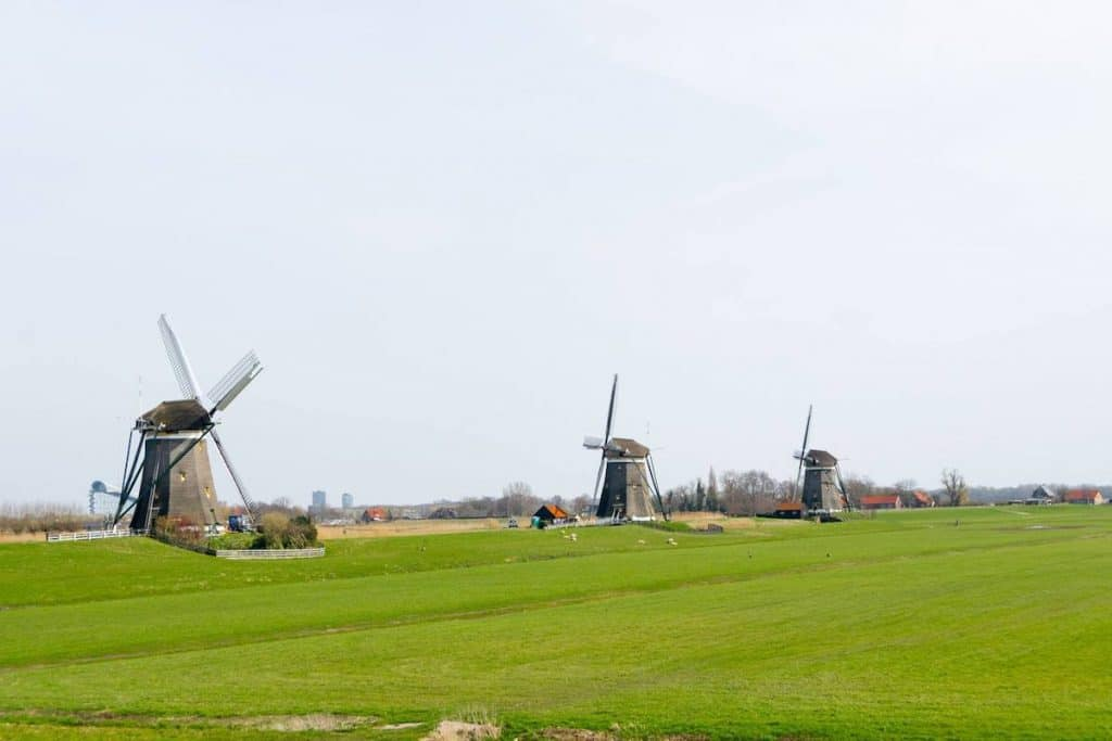 Molendriegang, one of the most famous landmarks of the Hague area. These Three Windmills outside of the Hague are easy to visit on a bike ride from the Hague. #holland #travel #hague #molen #windmills