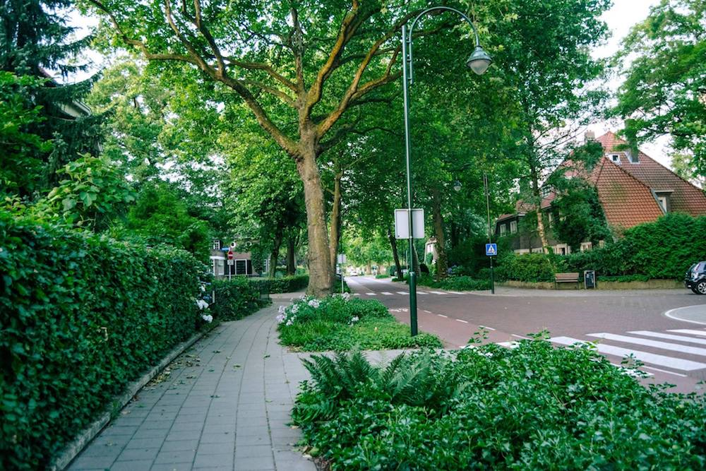 Beautiful lush streets of the Villapark neighborhood in Eindhoven, a leafy neighborhood where the industry barons used to live. #Eindhoven #Netherlands #philips