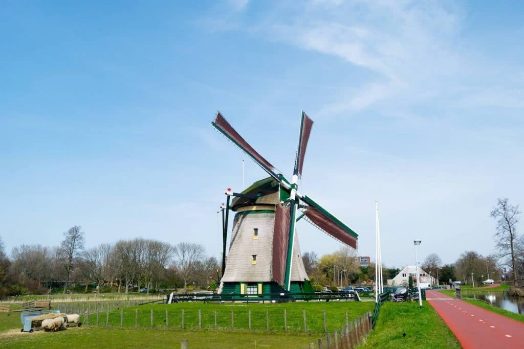 Essesteijn, a children's farm in Voorburg with a historic windmill musuem that you can visit on a bike trip from the Hague. #hague #holland #travel