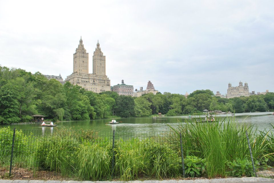 View of New York City from Central Park. Read what to do in New York in one day! #travel #NYC