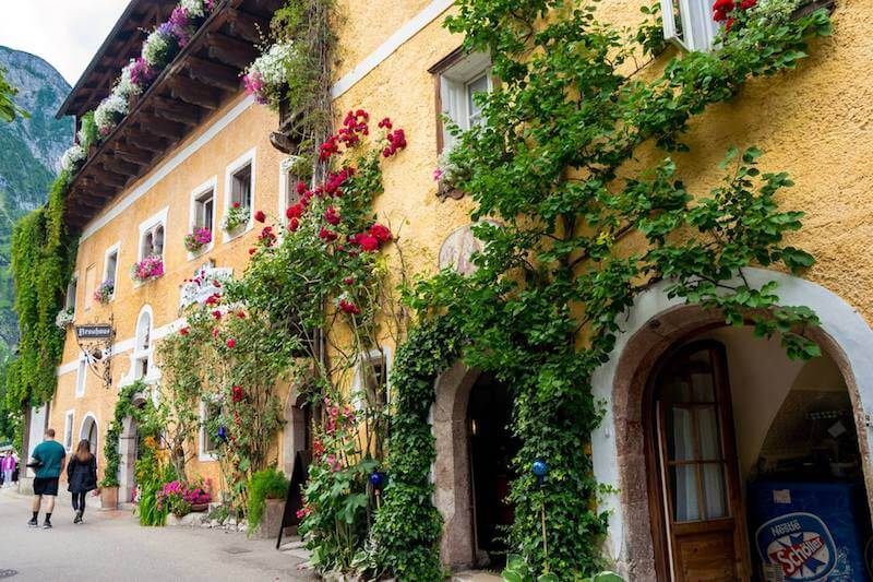 Couple admiring the beautiful architecture of Hallstatt, Austria with a brief view of the mountains. This beautiful yellow house covered in ivy with flowers is beautiful.