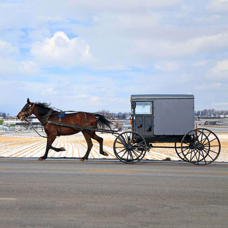 Horse and Buggy in Lancaster, Pennsylvania. Amish Country is one of the most unique regions of Pennsylvania to visit! #travel #pennsylvania