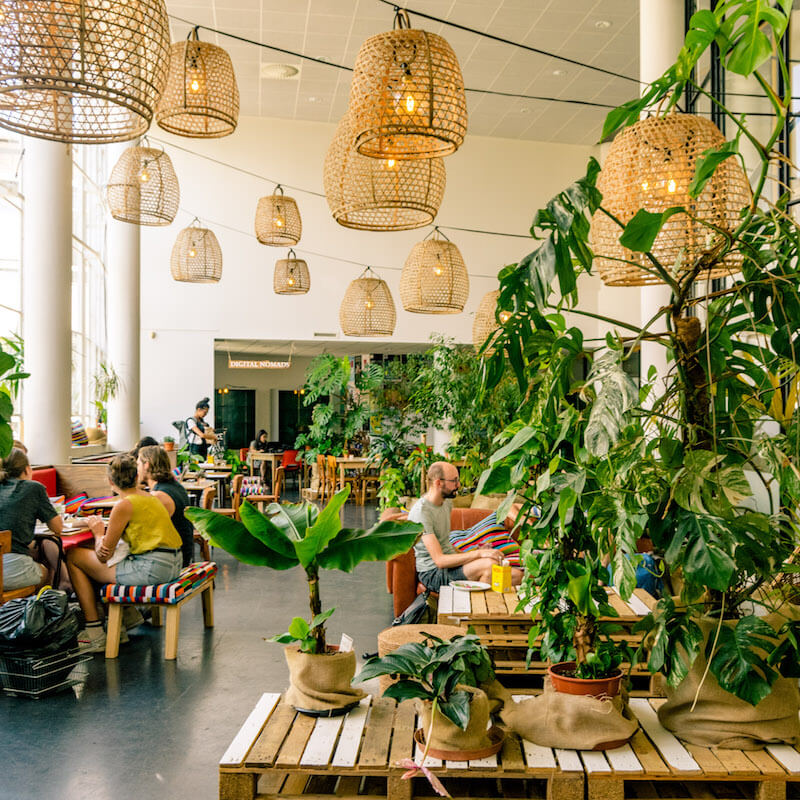 Beautiful interior of a cool cafe that you need to visit in Utrecht, the Netherlands. This digital nomad friendly is perfect for brunch! #utrecht