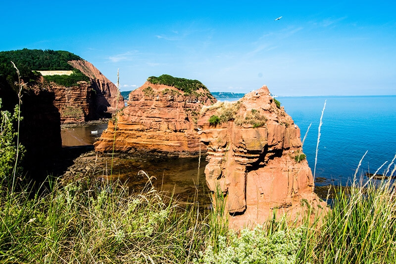 Beautiful sea stacks at Ladram Bay, a beautiful part of the Devon Cliffs!