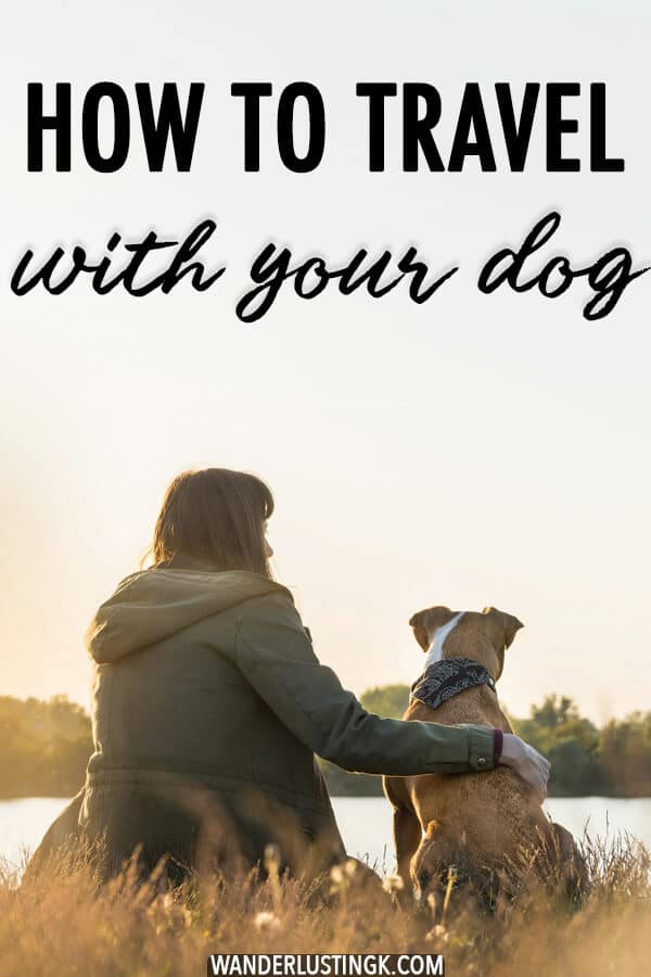 Planning to travel with a dog? Some tips to keep in mind when traveling internationally with your dog and moving abroad with your dog. #travel #pets