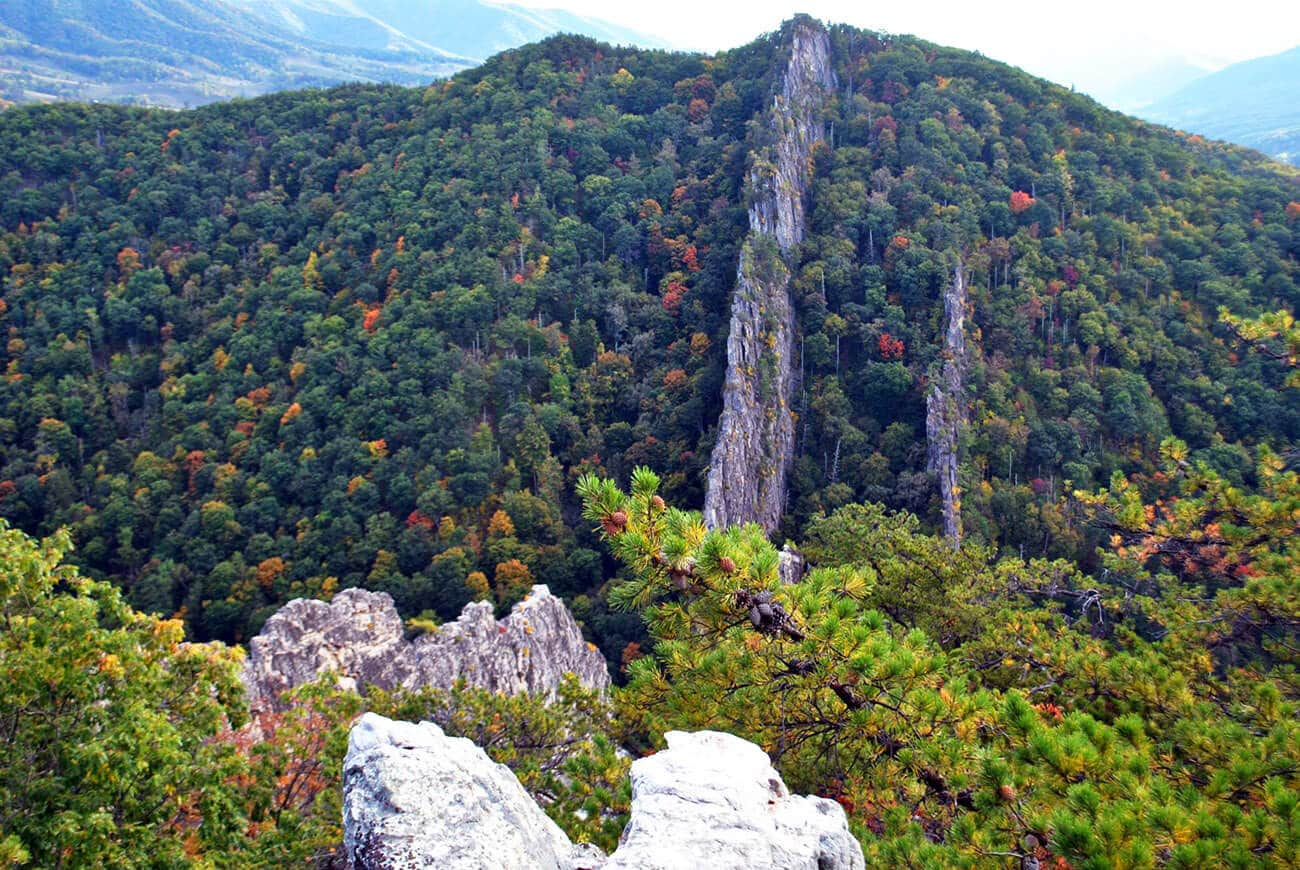 Stunning view of the Nelson Rocks from the Nelson Rocks Via Ferrata in West virginia!