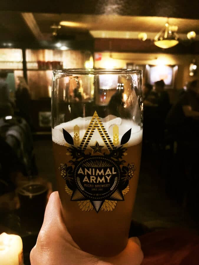 Glass of beer at Animal Army beer at the Fiddler in the Hague.  The Fiddler is the largest bar in the Hague. #travel #beer #craftbeer