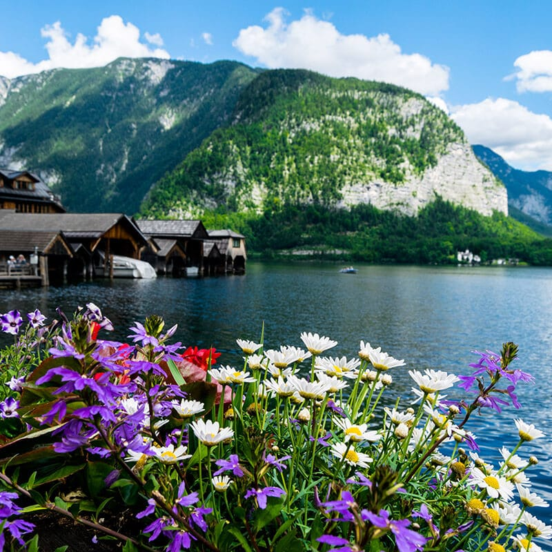 Beautiful waterside view of Hallstatt.  Read how to save money in Austria. #travel #austria
