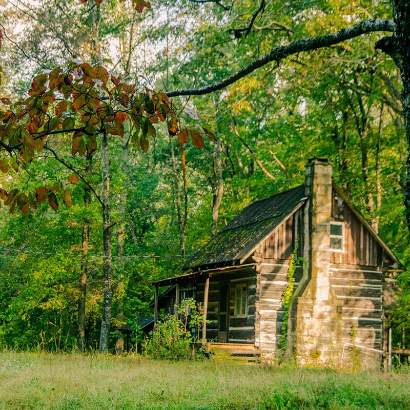 A beautiful wooden cabin in Eastern Kentucky. The woods of Eastern Kentucky are a reason to visit this region of Kentucky! #travel #woods #rural #kentucky #homestead